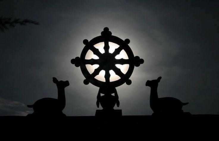 """""""Siempre deberías tener esto en mente: Hoy practicaré el santo dharma Mañana practicaré el santo dharma El próximo mes practicaré el santo dharma Siempre practicaré el santo dharma hasta alcanzar la iluminación."""