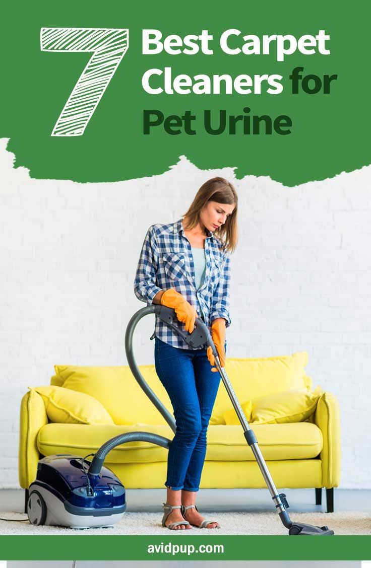 Top 7 Best Carpet Cleaners For Pet Urine Stains Odor With Images Carpet Cleaners Pet Urine Best Carpet