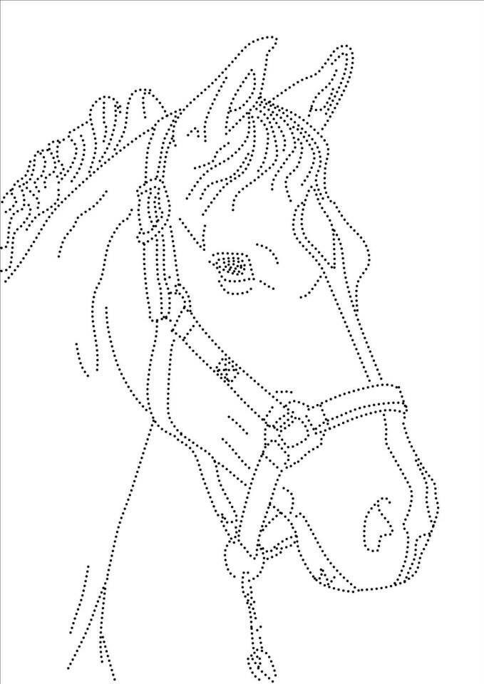 die 82 besten bilder zu horses pferde auf pinterest einladungen pferde party und pferde. Black Bedroom Furniture Sets. Home Design Ideas