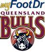 Queensland Bulls vs Tasmanian Tigers Jan 31 2017  Live Stream Score Prediction