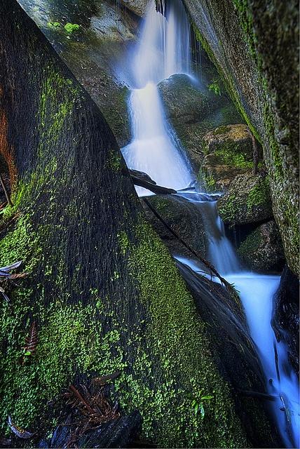 Mountain Creek, ACT, Australia