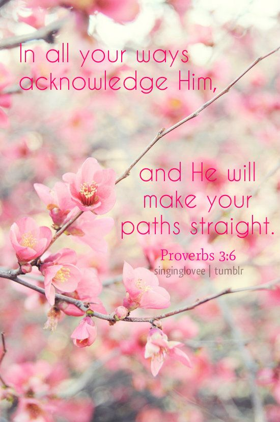 Proverbs 3:6 ~ In all Your ways acknowledge Him and He will make your paths straight...