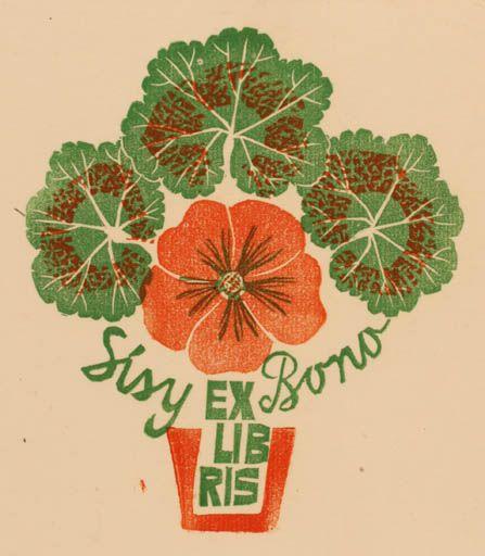 244 Best Flora Geraniums Images On Pinterest Geraniums