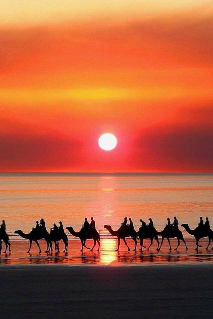 Sunset camel ride on Cable Beach, Broome, Western Australia