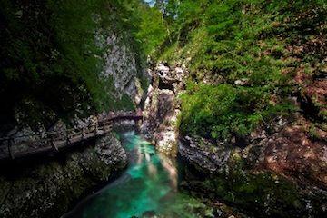 De wandelroute door de Vintgarkloof volgt onder andere de blauw-groene rivier Radovna. Duizenden jaren lang heeft deze rivier het kalksteen uitgesleten.