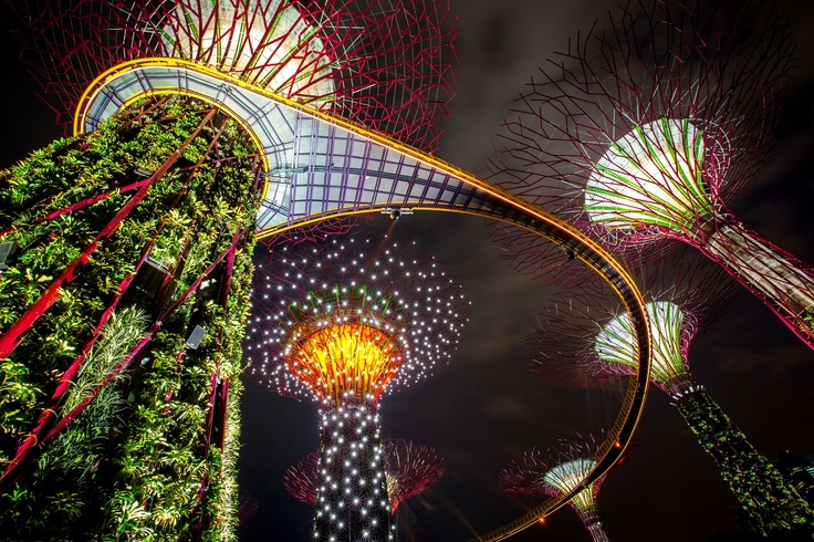 The Supertree Grove is illuminated during the Gardens by the Bay, Light and Sound show on July 2, 2012 in Singapore.