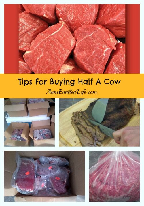 Tips for buying a cow, pig, goat, etc  http://www.annsentitledlife.com/anns-life/we-bought-half-a-cow/