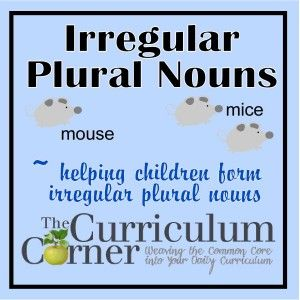 Learning About Irregular Plural Nouns | anchor chart | printables | file folder game | FREE | The Curriculum Corner