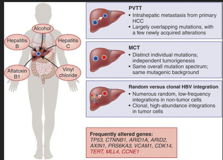 how to get liver cancer