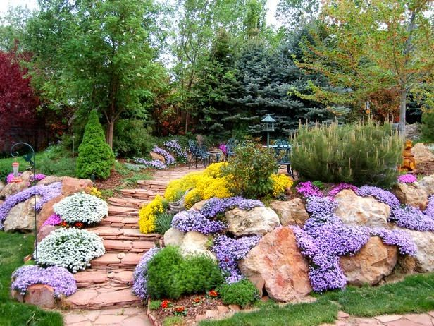 Pinner said We planted, all the hillside at our parents home i...