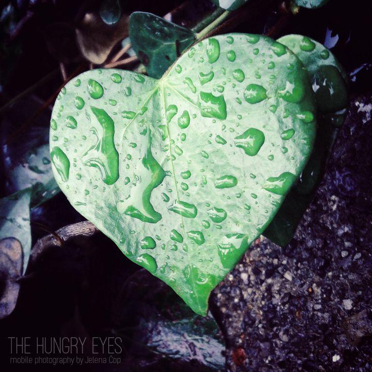 Heart Art Print, Wedding Decor, Inspirational Photography, Botanical Print, Green Art, Spring Decor, Wedding Gift, Nature Art, Nursery Decor by TheHungryEyes on Etsy