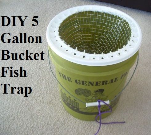 20 best fleshlight images on pinterest toys baby toys for Diy fish trap
