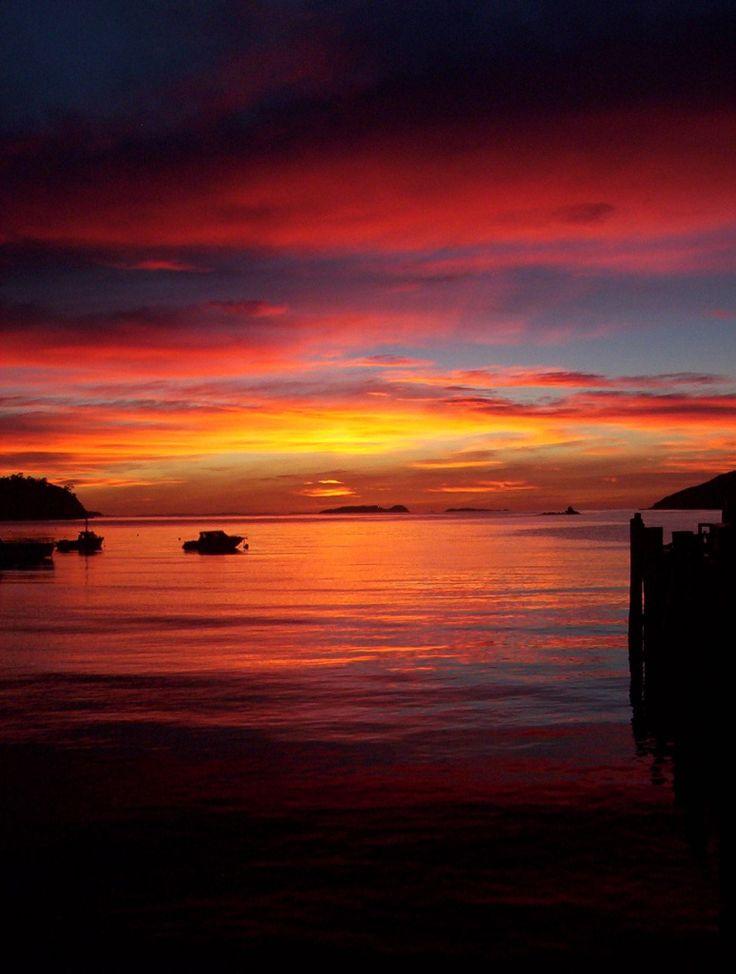 Stewart Island Rakiura ~ New Zealand