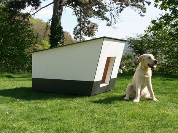 Kutyaház design Dog House, last seasons colours.