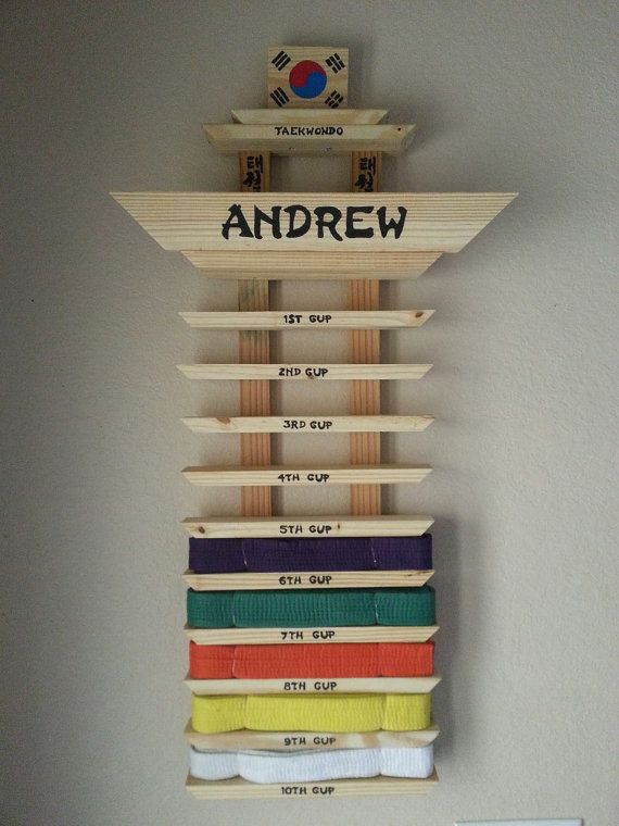 Customized Martial Arts Belt Display by creativityoncanvas on Etsy, $60.00