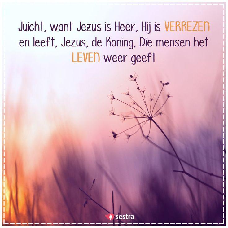 Juicht, want Jezus is Heer, Hij is verrezen en leeft, Jezus, de Koning, Die mensen het leven weer geeft. | Opwekking 174 | Sestra | Quotes | Spreuken | Christian | Christelijk | Easter | Pasen | Veertigdagentijd | Geloof | Faith
