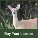 Indiana Hunting and Fishing Licenses - Buy Your License