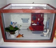 Inspiring picture aquario, bathroom, casa, cute, fish. Resolution: 540x405 px. Find the picture to your taste!