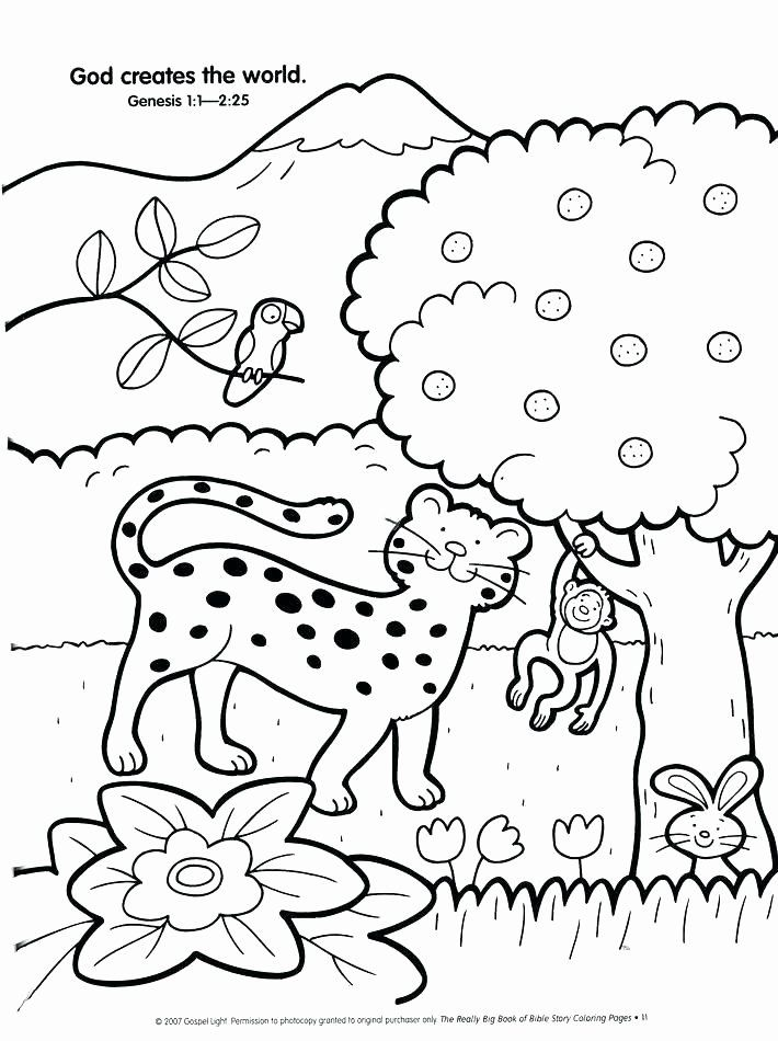 Days Of Creation Coloring Page Beautiful Seven Days Creation Coloring Pages At Getcolorings Creation Coloring Pages Bible Coloring Bible Coloring Pages