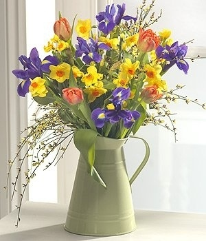 Good Morning - A stunning spring flower vase arrangement bursting with colour. The bright Iris blooms have been perfectly complimented by the glorious sunshine yellows and warm orange blooms of Paperwhite Narcissi, Genista and Tulips. Arranged by a florist and presented in an apple green zinc jug.