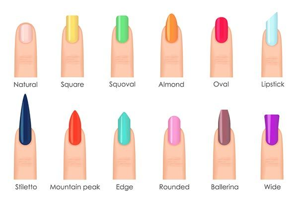 Image Result For Acrylic Nail Shapes Types Of Nails Shapes Nail