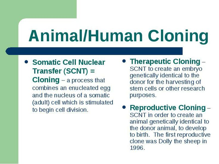 disadvantage of clonning Cloning an animal has few disadvantages, but the clone will only live about half the normal life-span the clone will not be exactly like the original animal some self-traits will set it apart, but it will look.