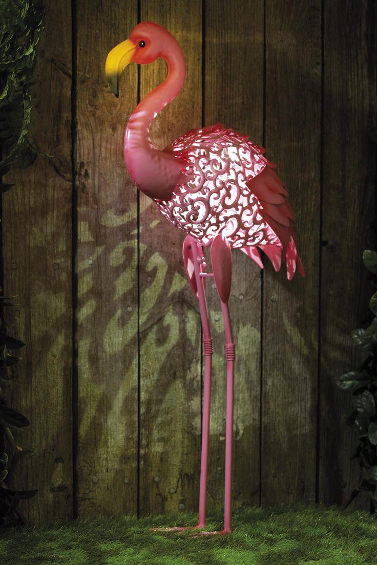 751 best flamingoes images on Pinterest   Flamingos, Pink flamingos ...