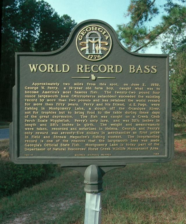 The Story of the All-time Largemouth Bass