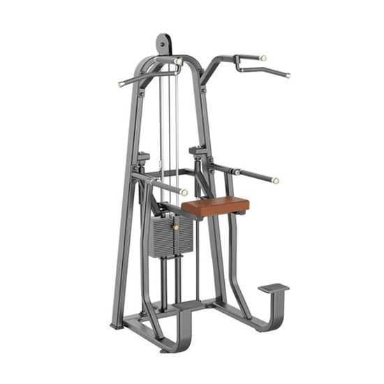Buy Quality China Assisted Chin Up Dip Machine TEKKEN-5115 from NtaiFitness, Best China Gym Equipment Assisted Chin Up Machine For Weight Loss.Buy Commercial Gym Equipment Assisted Chin Up Machine with Low Price From China Assisted Chin Up Machine Manufacturers.
