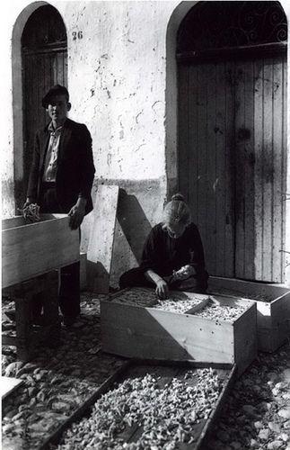 Palermo La lavorazione della manna antichi Mestieri anni '30…