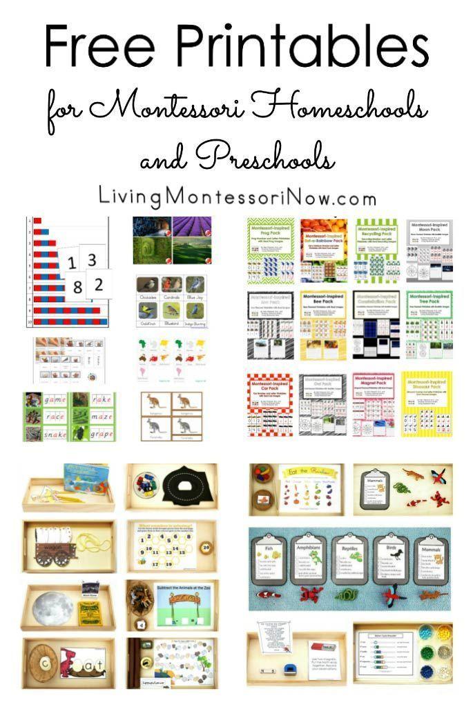 Free Printables For Montessori Homeschools And Preschools Montessori Activities Preschool Montessori Lessons Montessori Preschool Free montessori worksheets for kindergarten