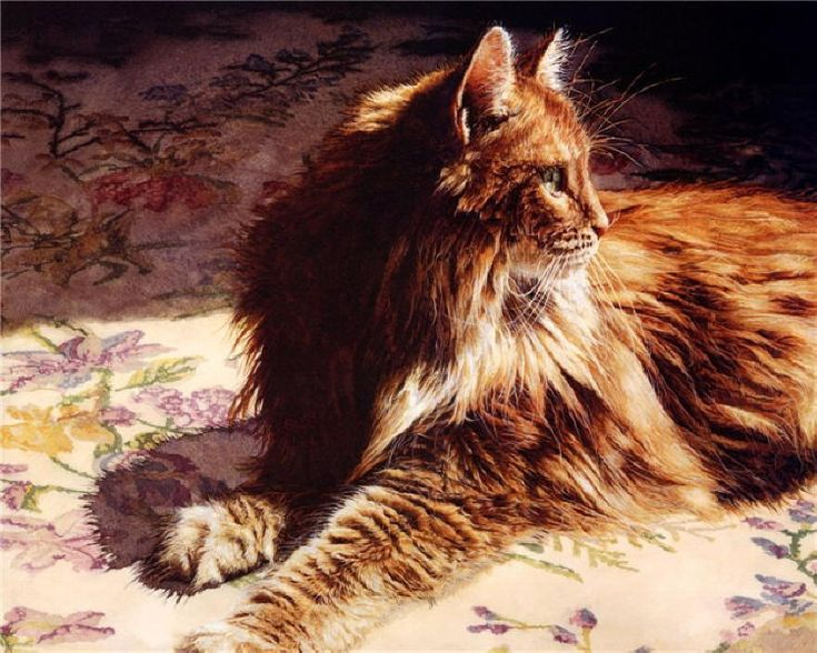 Orange cat paintings. Persis Clayton Weirs