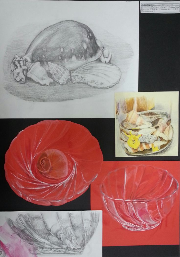 Anoof Page 1 comp 1.   Anoof selected A collection of shells in a glass dish and observed directly from shells that reminded him of his home in the Maldives. Here he used pencil, pencil on a painted ground and coloured pencil and examined the surface textures of shells, glass, and shells immersed in water inside a jar