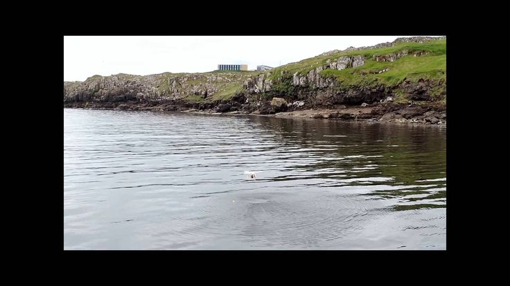 The future of fishing drone fishing how to catch a lobster for Best drone for fishing