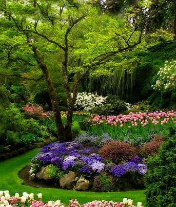 Sunken Garden, Canada. #Butchart #trees #flowers Photo by Rebecca Cruz on https://www.flickr.com/photos/canoeguru/7365320424/