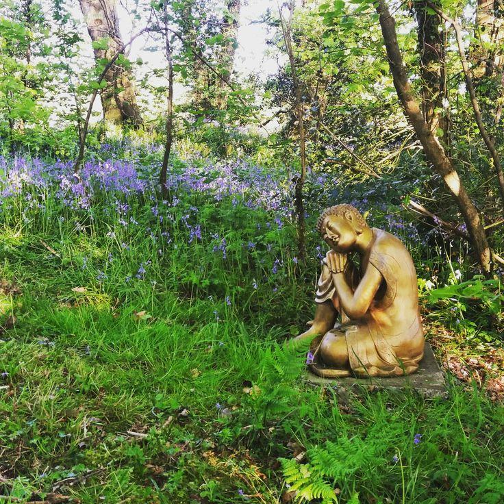 golden Buddha at Fron Farm