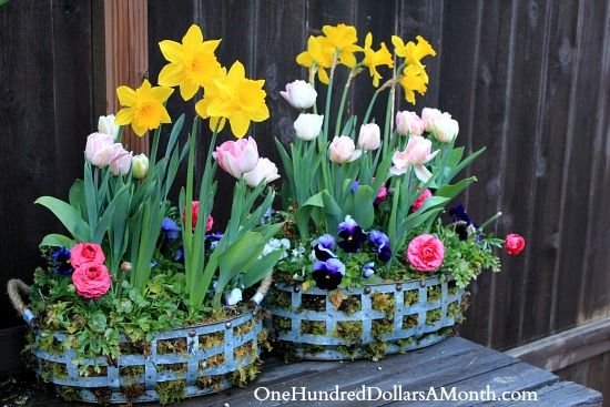 hanging baskets or 'holey' containers filled with moss before planting flowers for a neat look!
