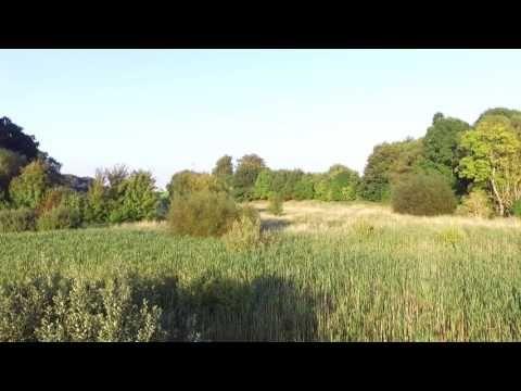 Drone (Light adjustment) - YouTube