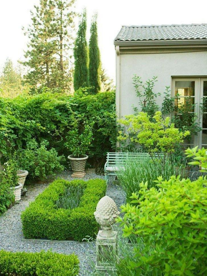 Backyard With Gravels And Boxwood Plants : Caring Tips For Boxwood Garden Plants
