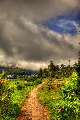 Indonesia - Java - Dieng Plateau