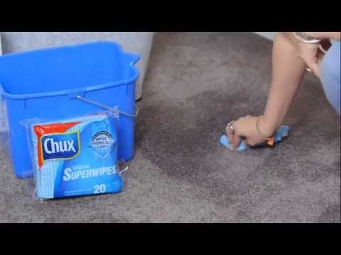 How to clean your carpet   The Home Team   Godfrey Hirst   Channel 10   Eco+ carpet #godfreyhirst #godfreyhirstcarpets #howtocleanyourcarpet #thehometeam #thehometeamtv