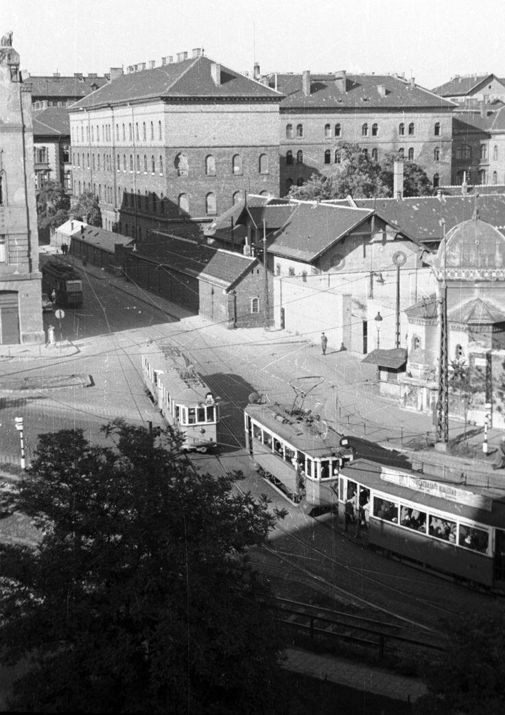 1959, Mező Imre út, 8. kerület