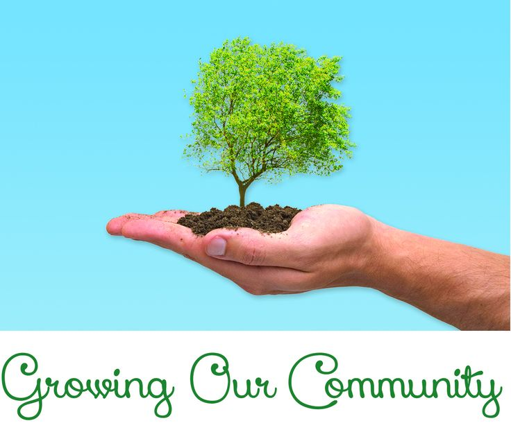 Growing our community - one tree at a time. #thecambridgetreetrust #restheaventrust