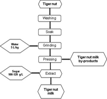 Tiger Nut (Cyperus esculentus) Commercialization: Health Aspects, Composition, Properties, and Food Applications