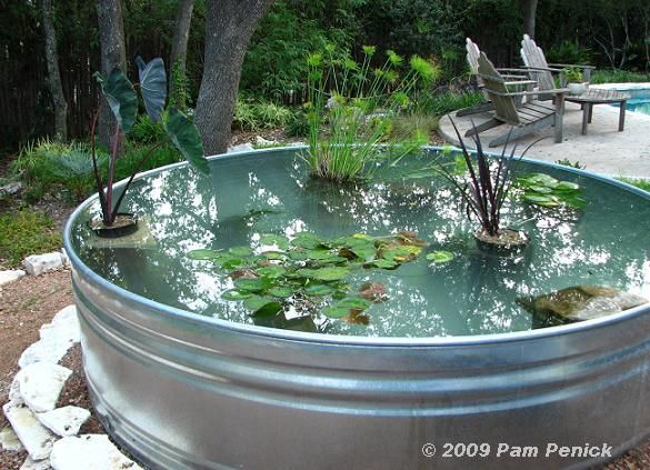 How To Make A Container Pond In A Stock Tank - http://www.ecosnippets.com/gardening/how-to-make-a-container-pond-in-a-stock-tank/