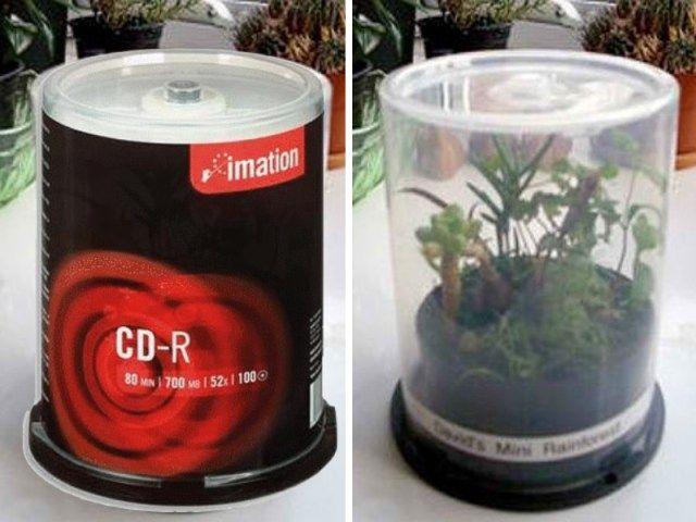 Une mini serre avec un tout à CD - Source : Balconygardenweb.com