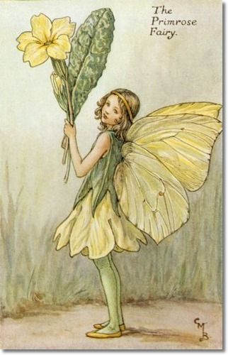 Cicely Mary Barker - Flower Fairies of the Spring - The Primrose Fairy