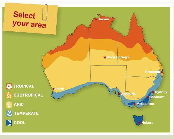 Australian vegetable guide to plant each month according to the region and season.