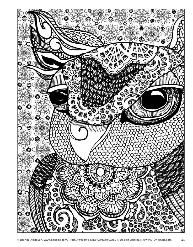 Awesome Owls Coloring Book By Fox Chapel Publishing