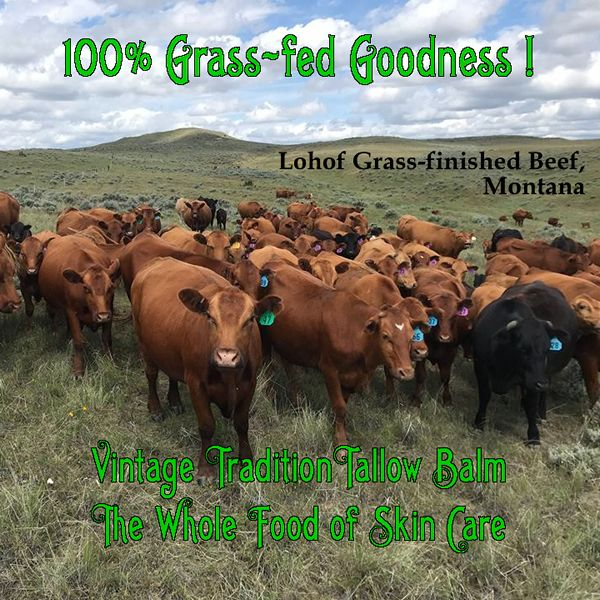 Tallow Balm The Whole Food Of Skin Care Lohof Grass Finished Meats Montana Lohofgrassfinishedmeats Grassfedbeef Tal Natural Skin Care The Balm Skin Care